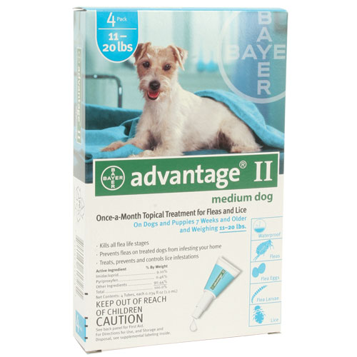 Advantage II for Dogs & Puppies - Teal - 11 to 21 lb. - 4 pk