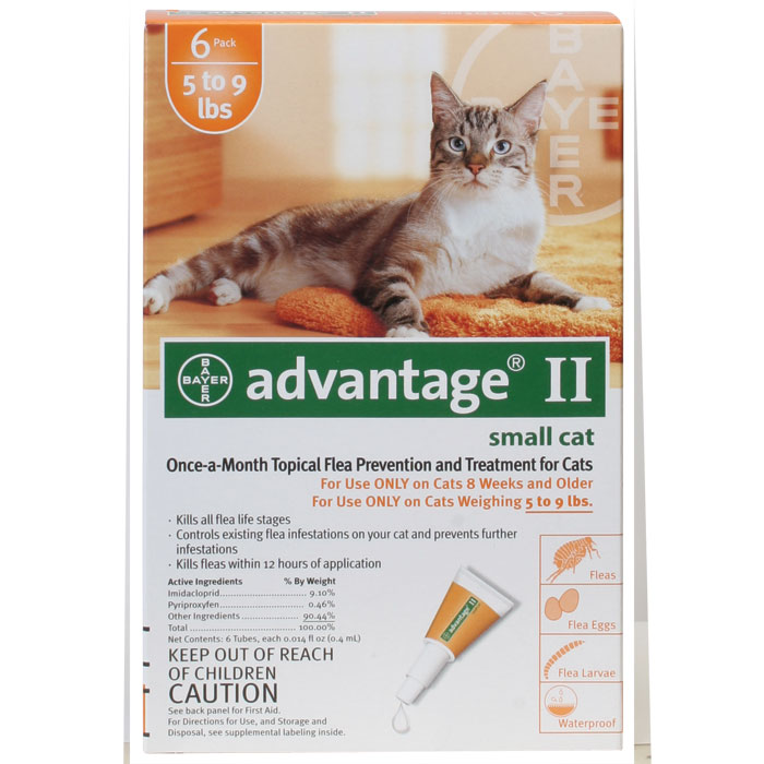 Advantage II Small Cat 5lbs to 9lbs - 6 pack Orange
