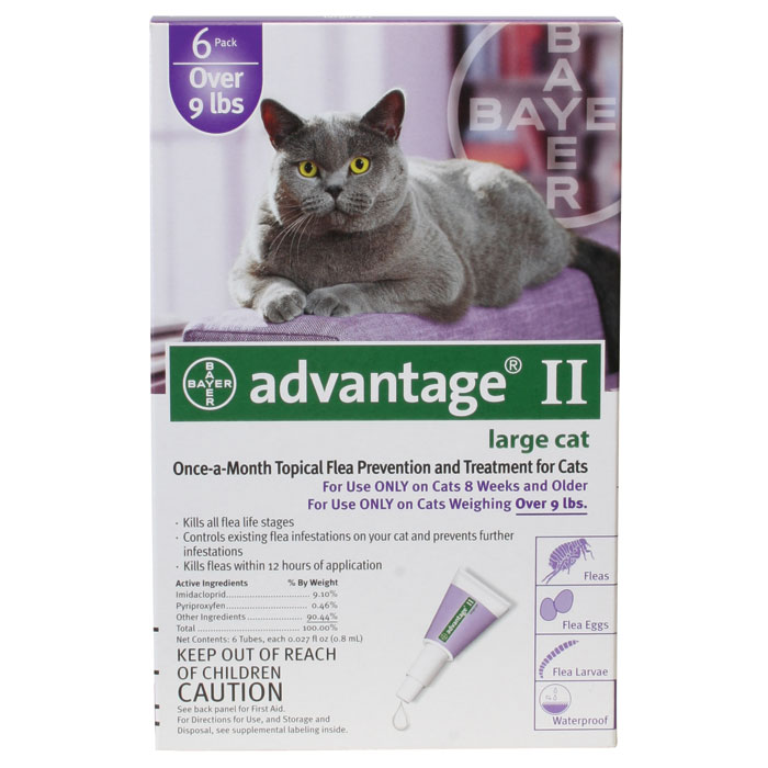 Advantage II Large Cat over 9lbs - 6 pack Purple