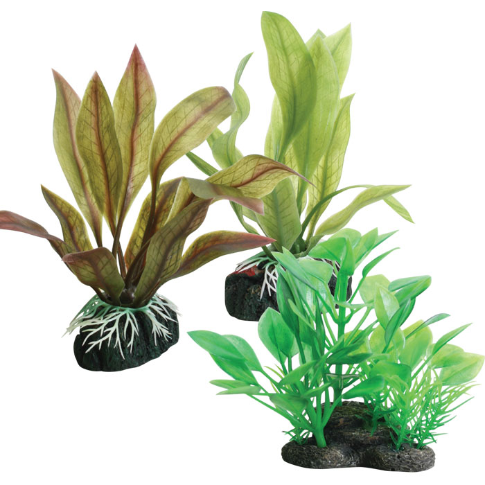Tropical Elements Crypt Plastic Plants
